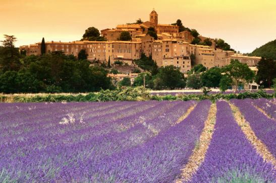 Provence in summer - 2-3 weeks